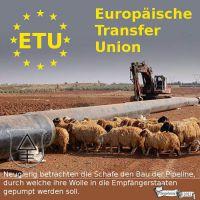 DH-EU_Transferunion_Pipeline_Schafe