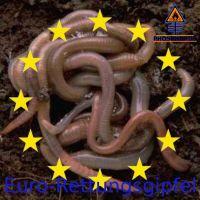 DH-Euro_Rettungsgipfel_Worms