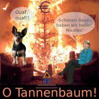 DH-Merkel_Sarkozy_Euro_Baumbrand