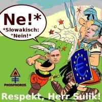 DH-Sulik_Asterix_haut_Barroso