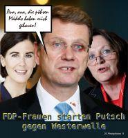 DH-Westerwelle_verpruegelt