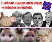 FW-eu-schweine-verbrecher