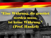FW-euro-keine-waehrung