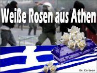 FW-griechenland-weisse-rosen