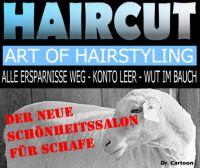 FW-haircut