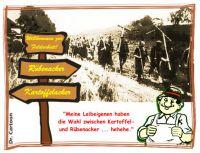 FW-kartoffel-ruebenacker
