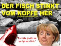 FW-merkel-fisch-kopf