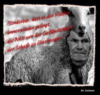 FW_wulff_schafspelz_1