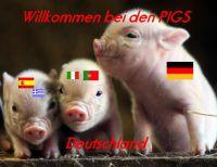 MM-Deutschland-PIG