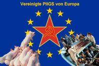 PW-pigs-europa