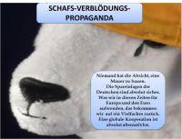 TK-Schaf-Propaganda