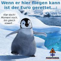 DH-Euro_Rettung_Pinguin
