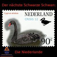 DH-Niederlande_Black_Swan