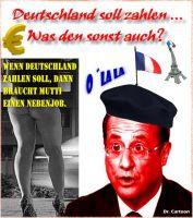 FW-frankreich-hollande-de-zahlen