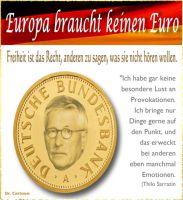 FW-sarrazin-keinen-euro