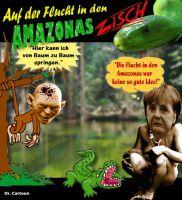 FW-schaeuble-amazonas