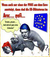FW-spanien-euro-raus