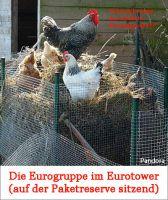 MB-Eurogruppe