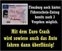 OD-Flensburg-Euro-Crash