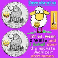 SilberRakete_Demokratie-2Wolf-1Schaf