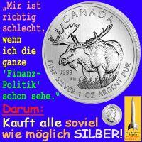SilberRakete_Elch-Finanz-Politik-Silber