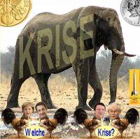 SilberRakete_Elefant-Welche-Krise