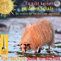 SilberRakete_Goldenes-Schaf-Sonne
