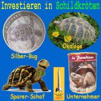 SilberRakete_Investieren-in-Schildkroeten