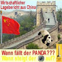 SilberRakete_Lagebericht-China-Panda