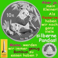 SilberRakete_Panda-Bambus-Essen-Silber