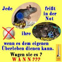 SilberRakete_Ratten-fressen-Kinder2