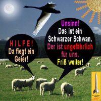 SilberRakete_Schafe-Geier-Schwan2