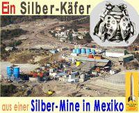 SilberRakete_Silber-Kaefer-Mine