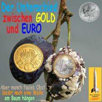 SilberRakete_Unterschied-Gold-Euro