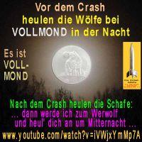 SilberRakete_Vollmond-Wolf-Nacht2