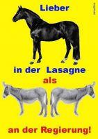AK-Lieber-Pferd-in-der-Lasagne-als-Esel-an-der-Regierung
