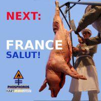 DH-Frankreich_PIG_next