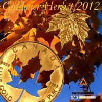 DH-Goldener_Herbst_2012