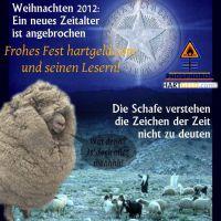 DH-Weihnacht_12_Stern_und_Schafe