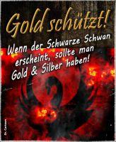 FW-gold-schwarzer-schwan_610x743