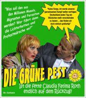 FW-gruene-roth-ruecktritt