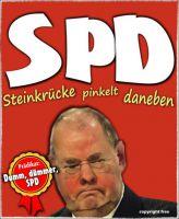 FW-spd-bundestagswahl2013-3_610x743