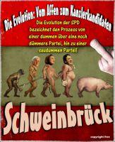 FW-spd-schweinbrueck_622x759