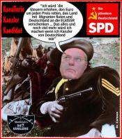 FW-spd-steinbrueck-kanzler-2