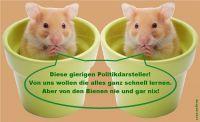HK-Hamster-Lieblingstiere-der_Politikdarsteller