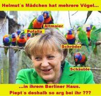 HK-Helmuts-Maedchen-hat-mehrere-Voegel