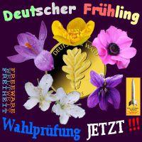 SilberRakete-Deutscher-Fruehling-GOLDENE-Eiche-Blueten-Wahlpruefung-jetzt