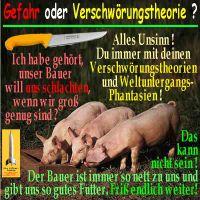 SilberRakete_3Schweine-schlachten-Messer-Verschwoerung