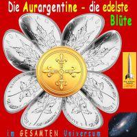 SilberRakete_AURARGENTINE-Silberblume-Maple3