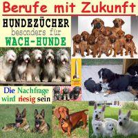 SilberRakete_Berufe-Zukunft-12_Hundezuechter